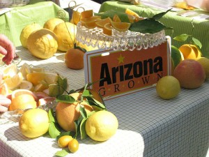 Arizona Citrus - Two Second Street - www.twosecondstreet.com