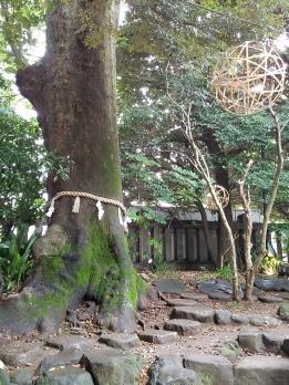 Hikawa Garden - Two Second Street - www.twosecondstreet.com