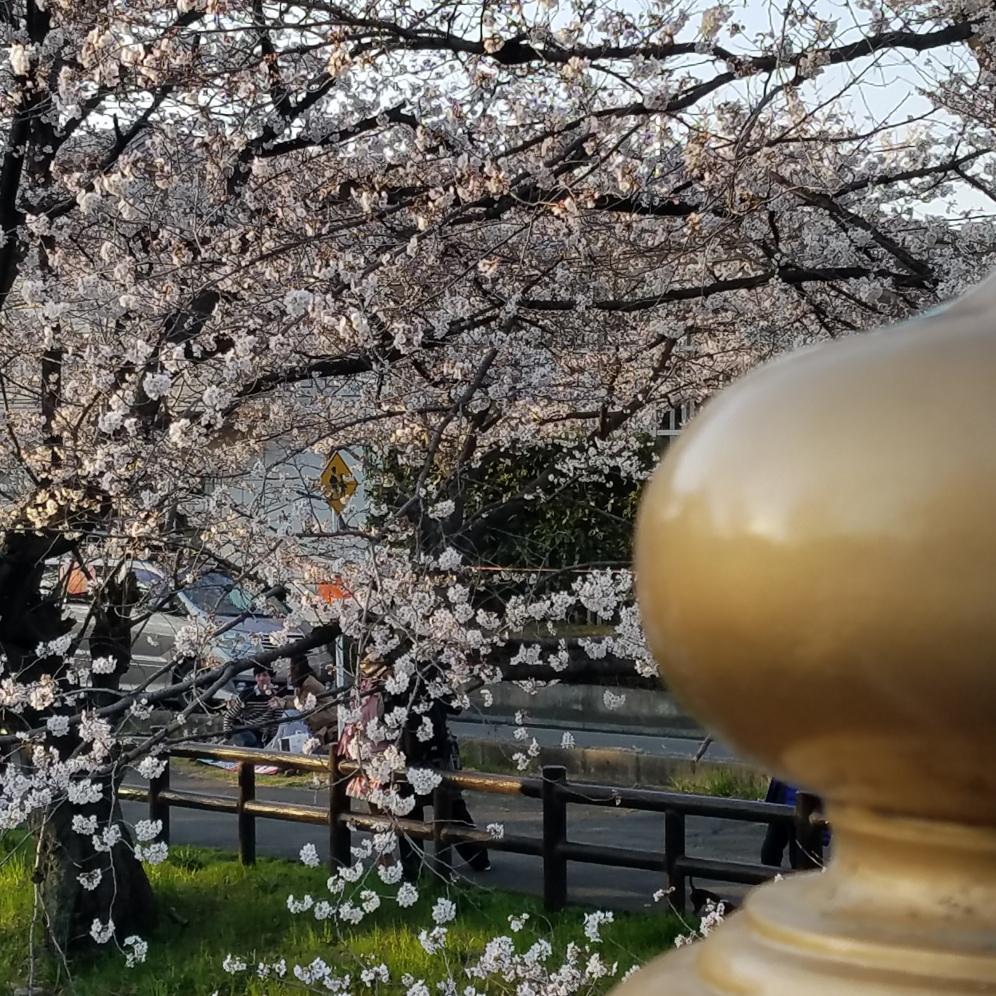 Hikawa-bashi - Two Second Street - www.twosecondstreet.com
