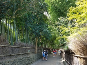 Arashiyama Bamboo Path - Two Second Street - www.twosecondstreet.com