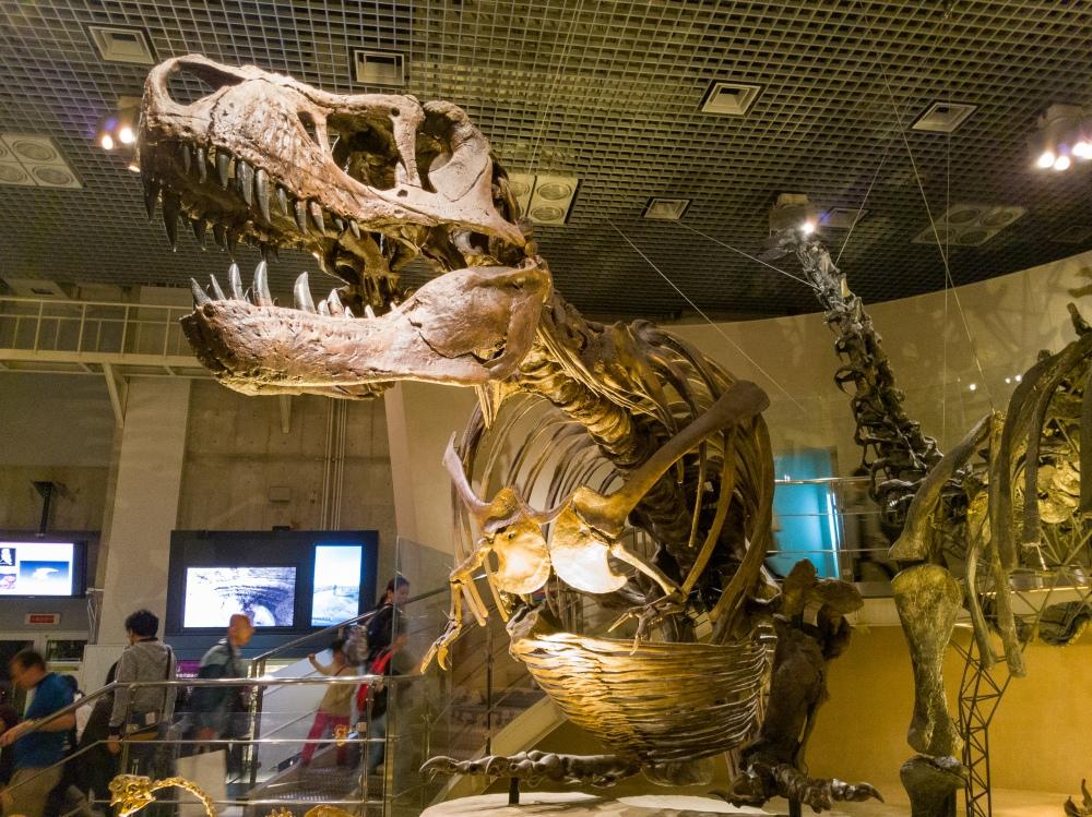 Crouching T-Rex - Two Second Street - www.twosecondstreet.com